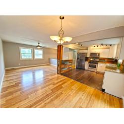 Lovely Suson Park South County Family Home